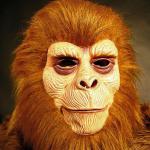 Monkey Mask