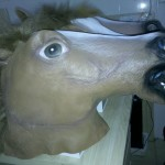 compare three kinds of the horse mask